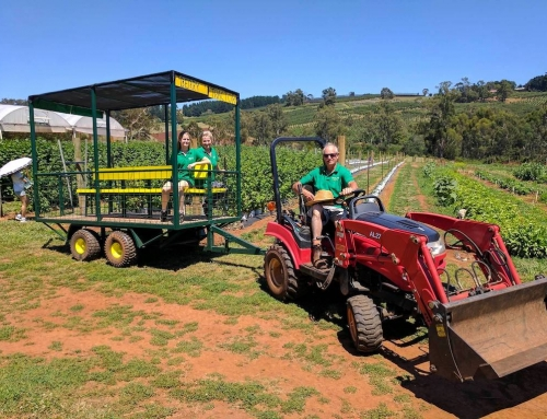 New Berry Tractor ride for the whole family!